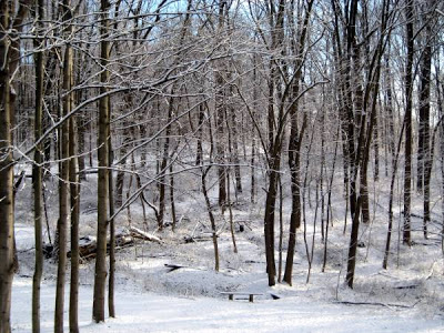 a strong temptation in stopping by woods on a snowy evening ← the silent lullaby: essay to stopping by woods on a snowy evening by robert frost duty versus temptation in robert frost's stopping by woods on a snowy evening → laisser un commentaire annuler la réponse.