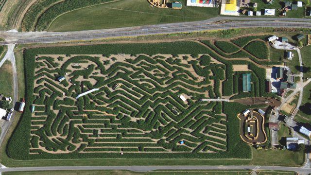 corn maze cherry crest adventure farm- aerial