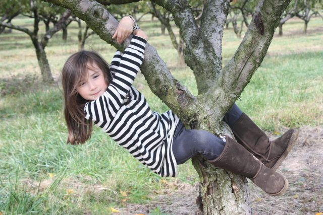 climbing apple trees