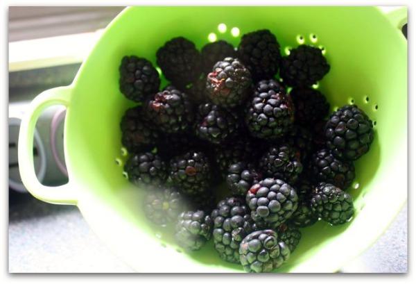 blackberry colander
