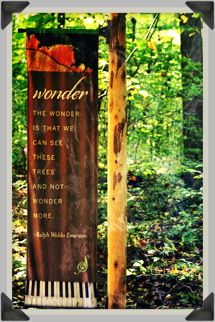 wonder emerson quote trees