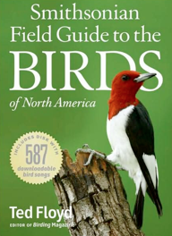 field guide birds