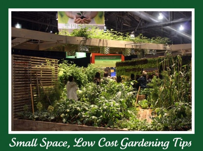 small space gardening 700x523 Small Space, Low Budget Gardening Tips (Lessons learned from the Flower Show)