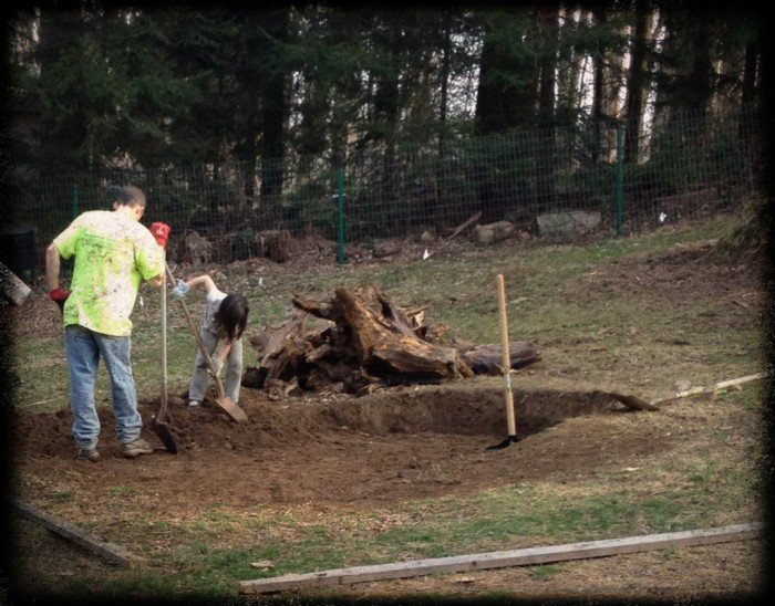 DIY tree stump removal