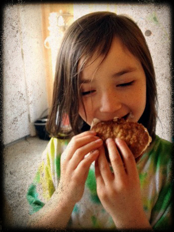 Cass oatmeal creme pie Recipe: Homemade Oatmeal Creme Pies
