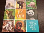 Book Review: Hey, Baby! A Collection of Pictures, Poems, and Stories from Nature's Nursery